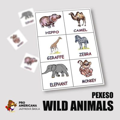 PEXESO-wild-animals